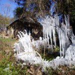 Alpa Corral mas vegetacion congelada en invierno