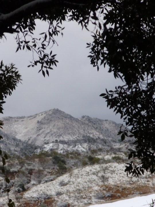 Alpa Corral Cerro Blanco Nevado